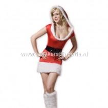 Kerstjurkje Blaricum
